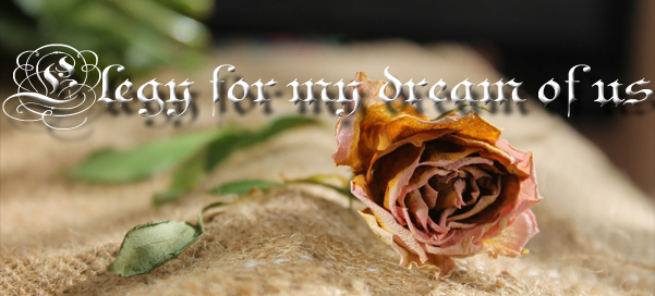 Elegy for my dream of us